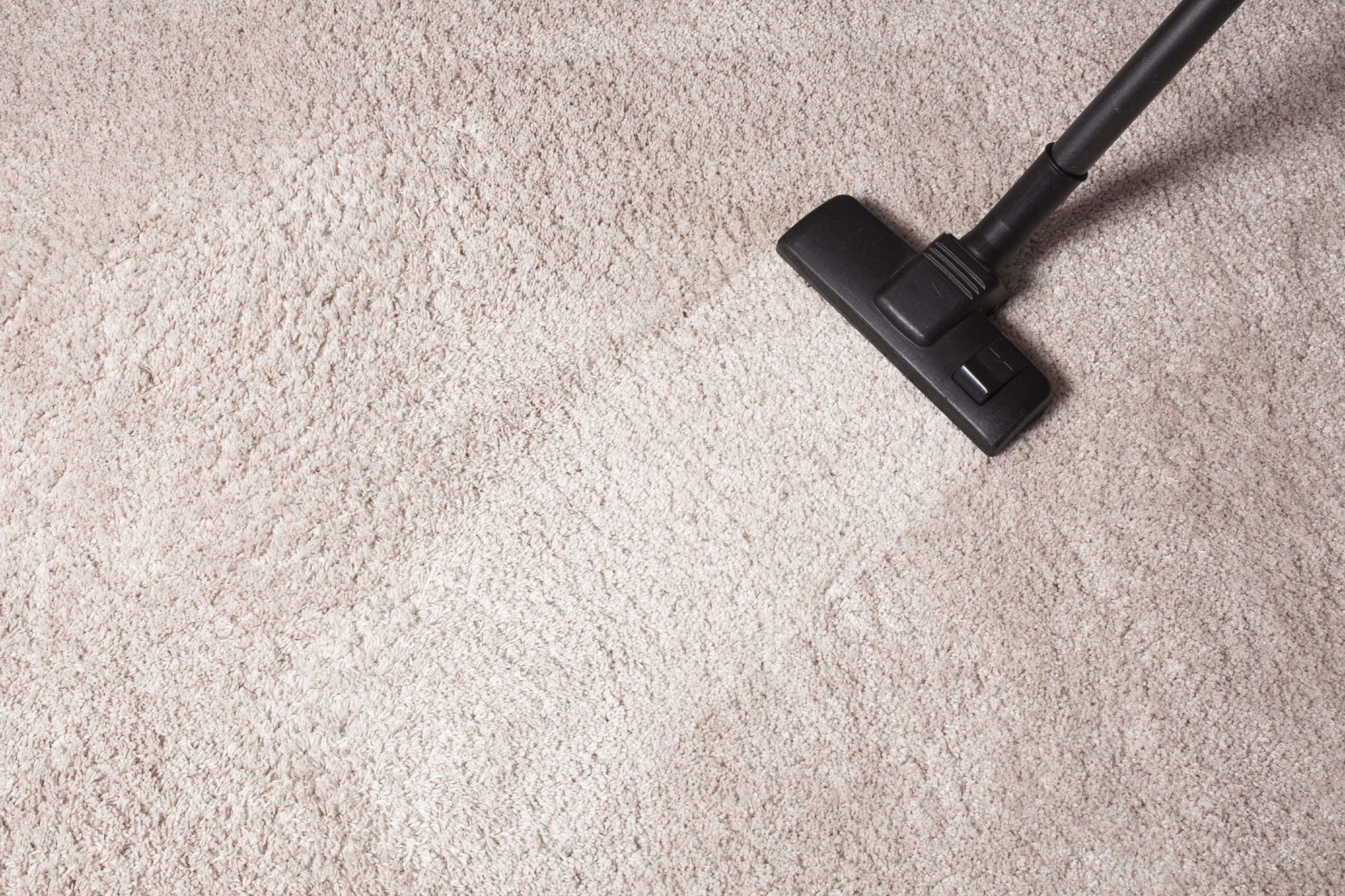 carpet cleaning. (405) 585-3530 · home about our company carpet cleaning